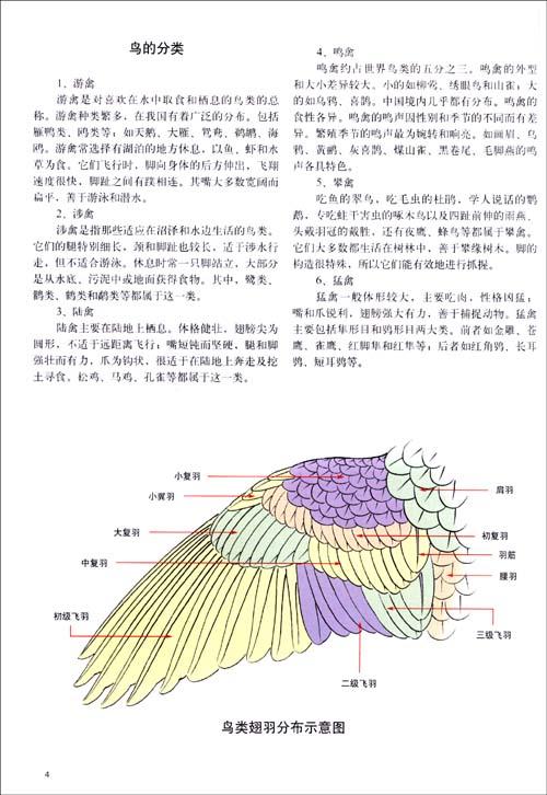 出版有《工笔牡丹画法(三)》