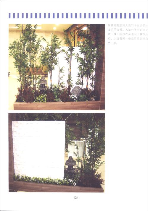 梦想庭院:组合盆栽DIY