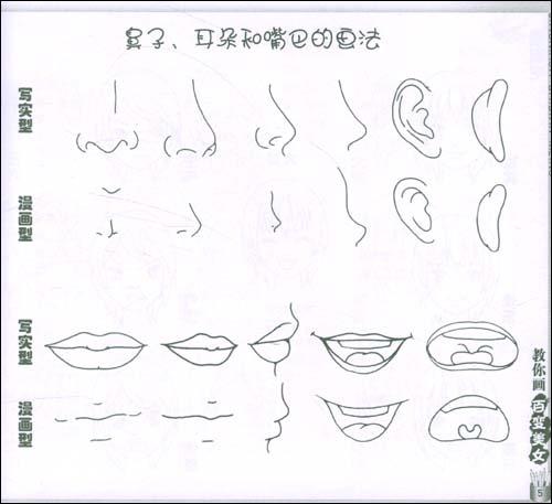 鼻子耳朵嘴巴的画法.