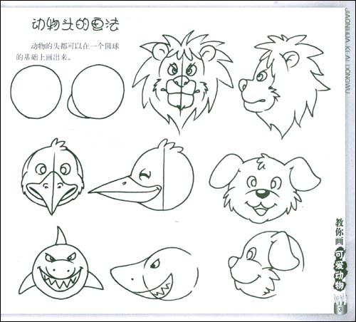 动物头的画法/3  动物的比例特征/4
