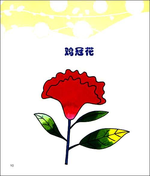 童笔画童心系列:童笔画花卉/叶芳-图书-亚马逊-创意迷宫 2 4岁 童心怡