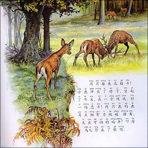 跟随小动物的足迹3:小鹿的心愿 [精装]