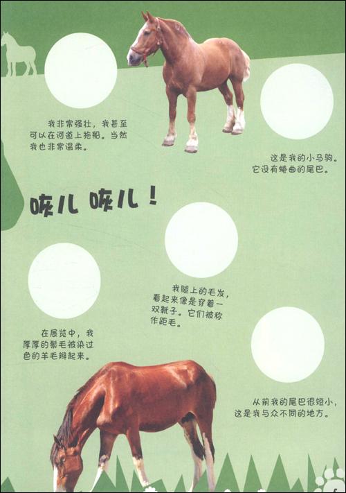 动物小档案:农场动物:亚马逊:图书