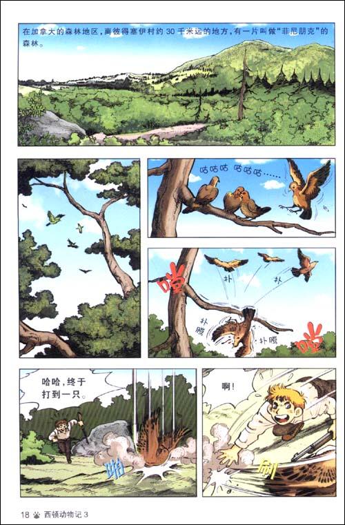 """西顿动物记3:山猫与托米的对决,野兔英雄""""小战马""""(漫画版)图片"""