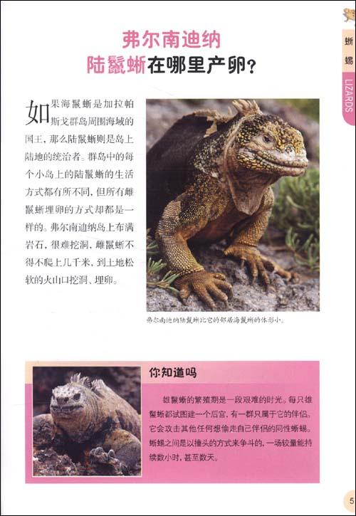 你知道吗?最新版动物权威揭秘百科:爬行动物和两栖动物全揭秘