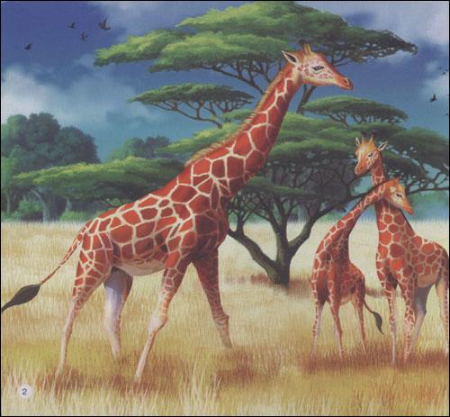 幼儿动物百科故事:长颈鹿与马/曾维惠