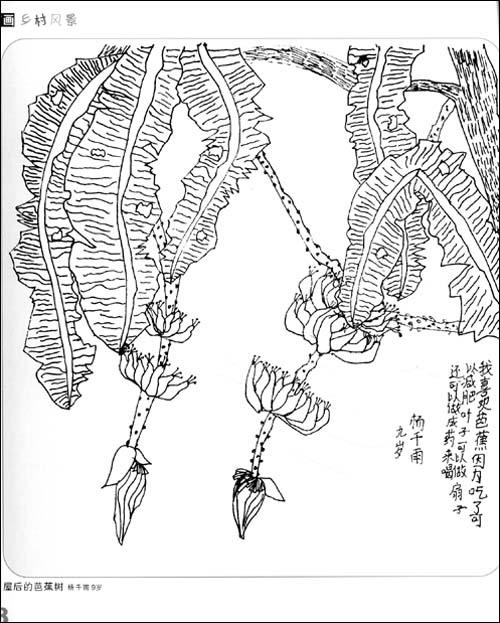 《孩子笔下的乡村风情:线描画61风景篇》 李永永