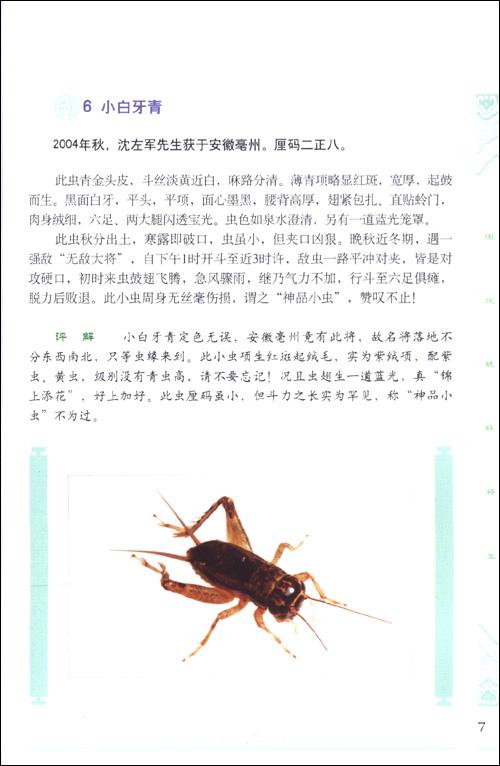 蟋蟀将军图谱电子版_图说蟋蟀将军亚马逊图书图片