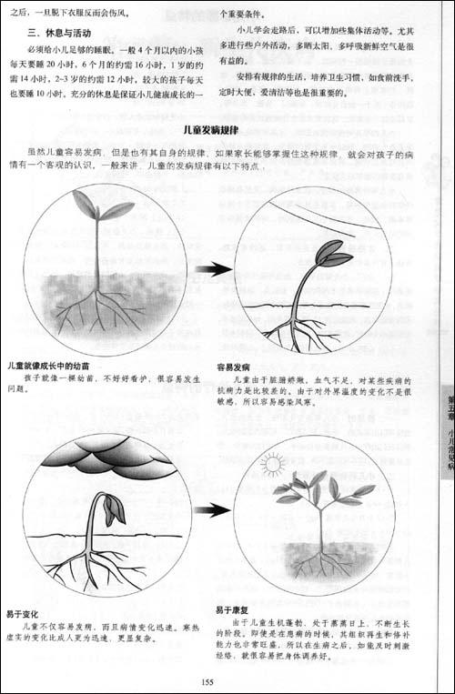 人体标准经络穴位图(二)  人体手足按摩诊病图解  家庭常用中草药