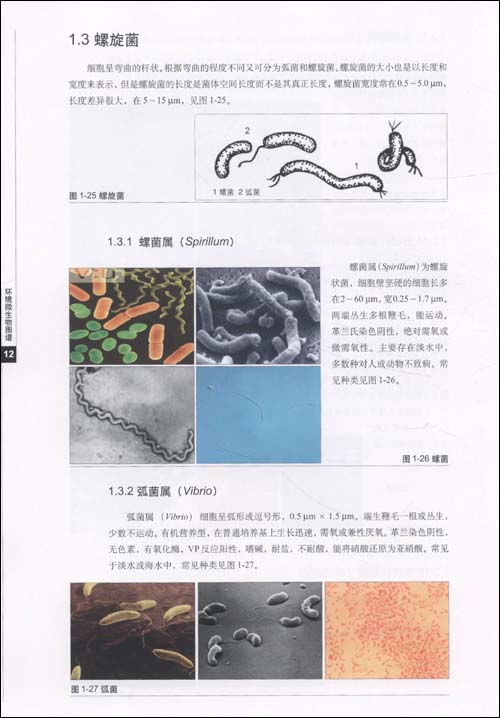 Txt  280x280 22kb 环境 微 生物 图谱 分享 环境 微 生物