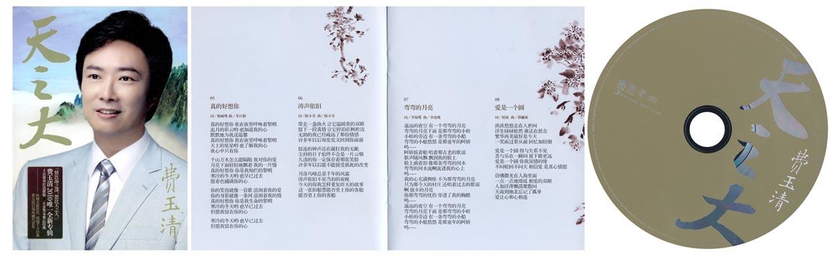 费玉清:天之大(cd)