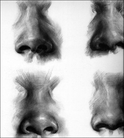 回至 素描头像必考角度1:正面,正侧面 (平装)