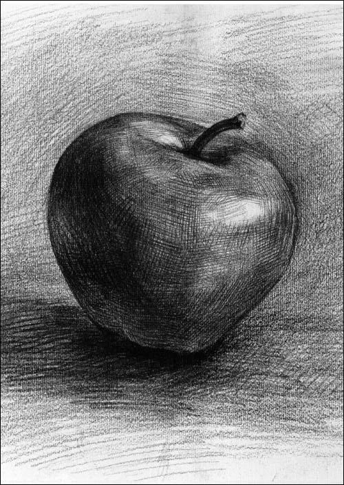 《绘画学习第1起跑线:基础素描61素描静物教程》