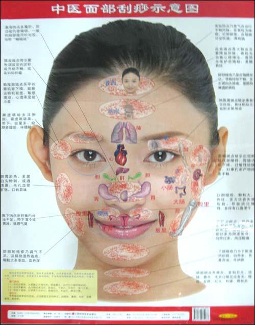脸部刮痧手绘图