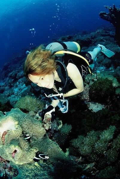 壁纸 海底 海底世界 海洋馆 水族馆 401_600 竖版 竖屏 手机