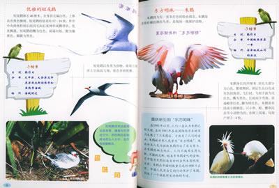 濒危的珍稀动物(彩图版)