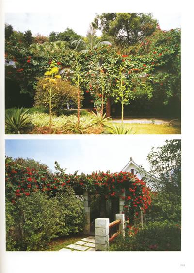 藤蔓植物景观(精装):亚马逊:图书