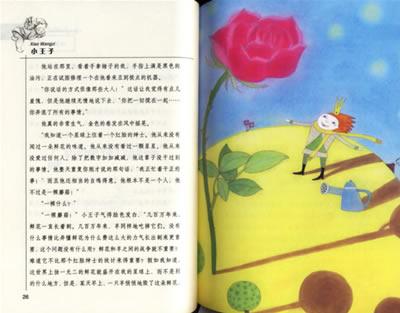小王子:亚马逊:图书