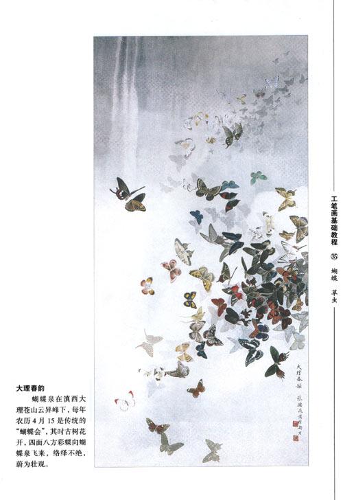 蝴蝶草虫/工笔画基础教程/张德泉-图书-卓越亚马逊