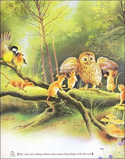 这些动物形象逼真,活泼可爱,你会发现它们离你那么远.