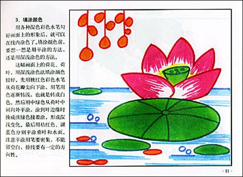 儿童彩色水笔画:植物/刘金成-图书-亚马逊中国-儿童简笔画 植物 风景