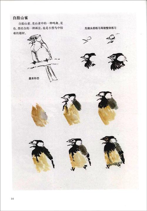 写意鸭子的画法步骤