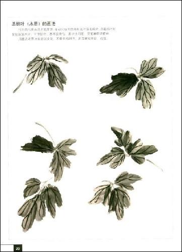 的画法[提高班教程]   墨牡丹画法   牡丹花叶子的画法 _非常高清图片
