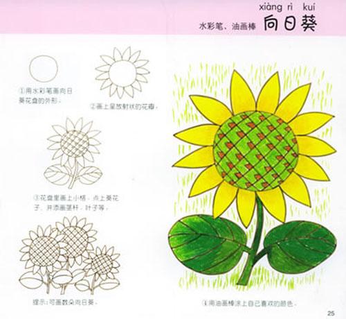 植物(折折画画)\/叶淑琴-图书-亚马逊