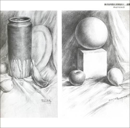 全因素素描静物作品-美术高考强化训练临本4 素描静物 郑培华素描集