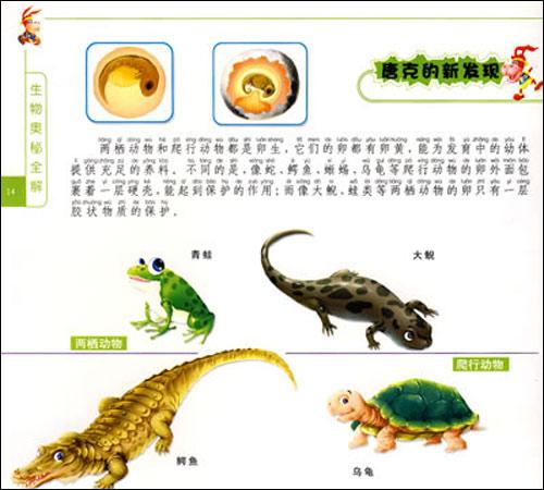 生物奥秘全解:动物篇·两栖爬行类(唐克原创书苑)