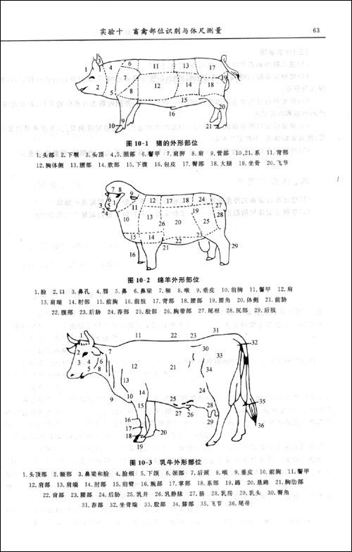动物育种学实验教程