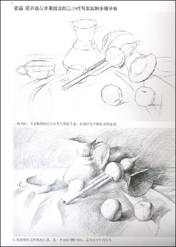 美术高考三小时实战范例:王昭举素描静物