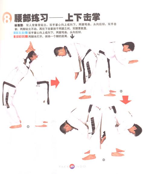 跆拳道品势比赛规则(最新)