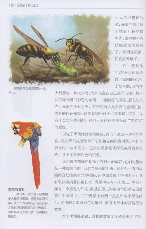 一生必读的世界十大名著•昆虫记