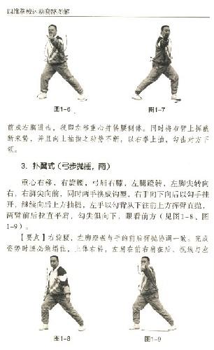 四维拳械运动 套路图解