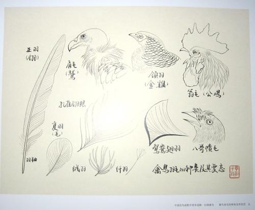江西师范大学手绘图