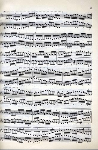车尔尼钢琴练习曲50首 作品740 世图乐谱系列.钢琴