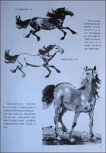 徐悲鸿画马技法/韦江凡-图书-亚马逊中国