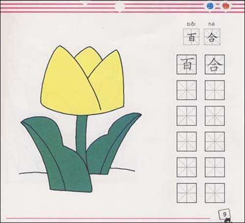 儿童简笔画入门:植物/蜗牛动漫工作室-图书-亚马逊