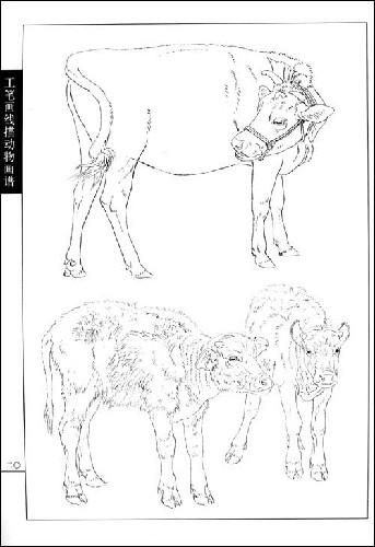 工笔画线描动物画谱:牛羊篇