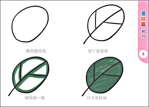 design 柿子简笔画图片5张  柿子简笔画画法图解 水果简笔画图片大全