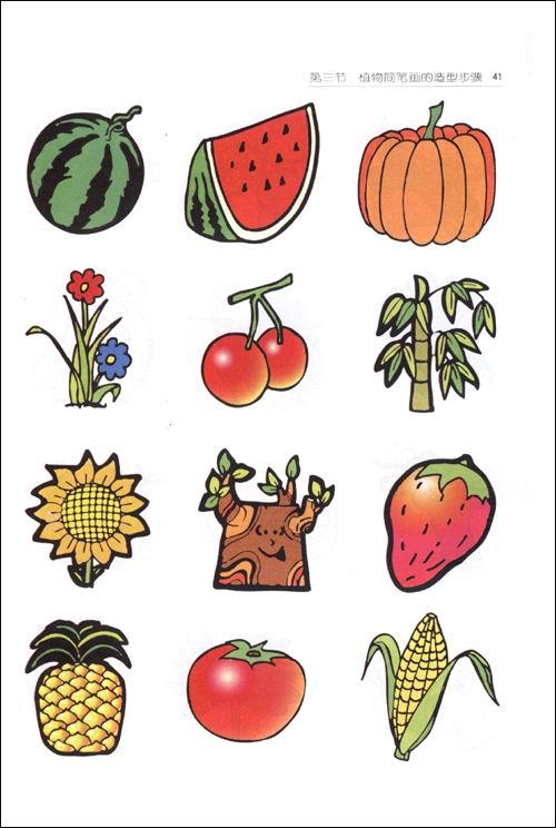 素描简笔画 彩色植物