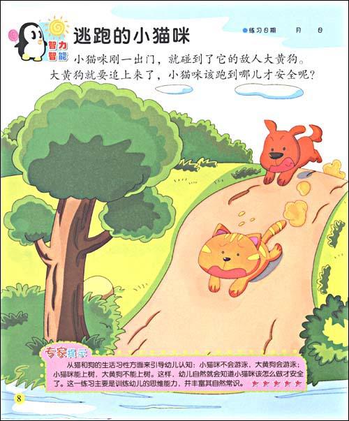 熊猫动物布贴画展示