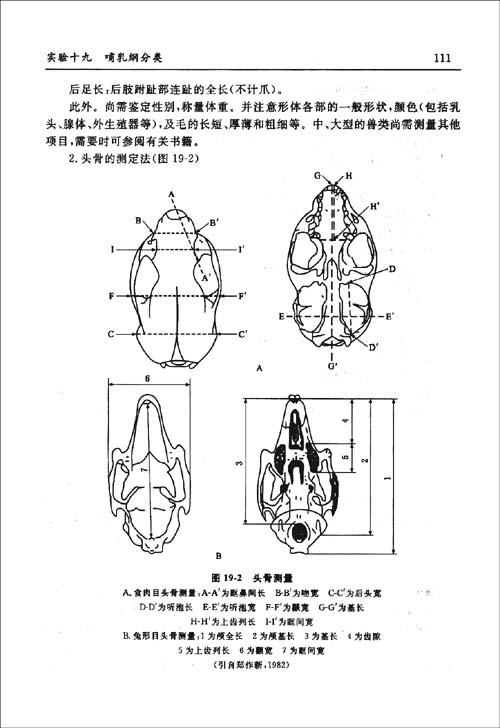 工程图 简笔画 平面图 手绘 线稿 500_728 竖版 竖屏