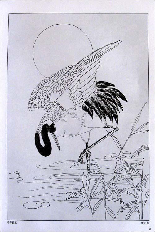 仙鹤白描画稿:美术教学示范作品 [平装]