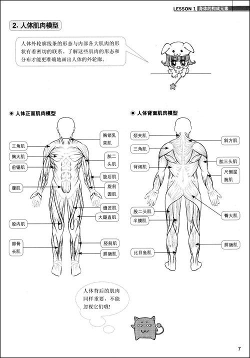 人体 卡通示意图