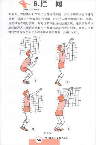 阳光体育运动:排球