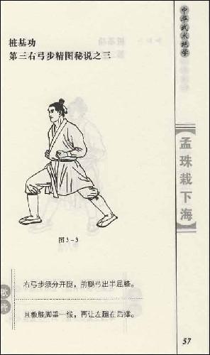 功家秘法宝藏•孟珠栽下海
