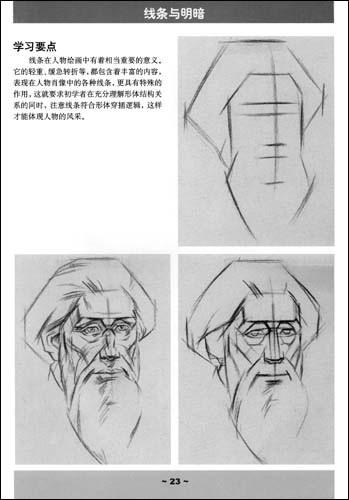 塑造的完整性 半身像素描要论 结构与比例 作画步骤 形体与结构 手的