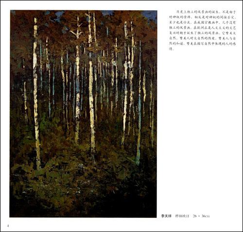 赵友萍李天祥油画风景写生/李天祥-图书-卓越亚马逊